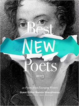 Best New Poets 2013 book cover